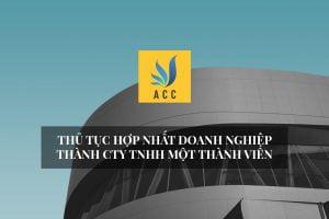 Thủ tục hợp nhất doanh nghiệp thành Công ty TNHH một thành viên